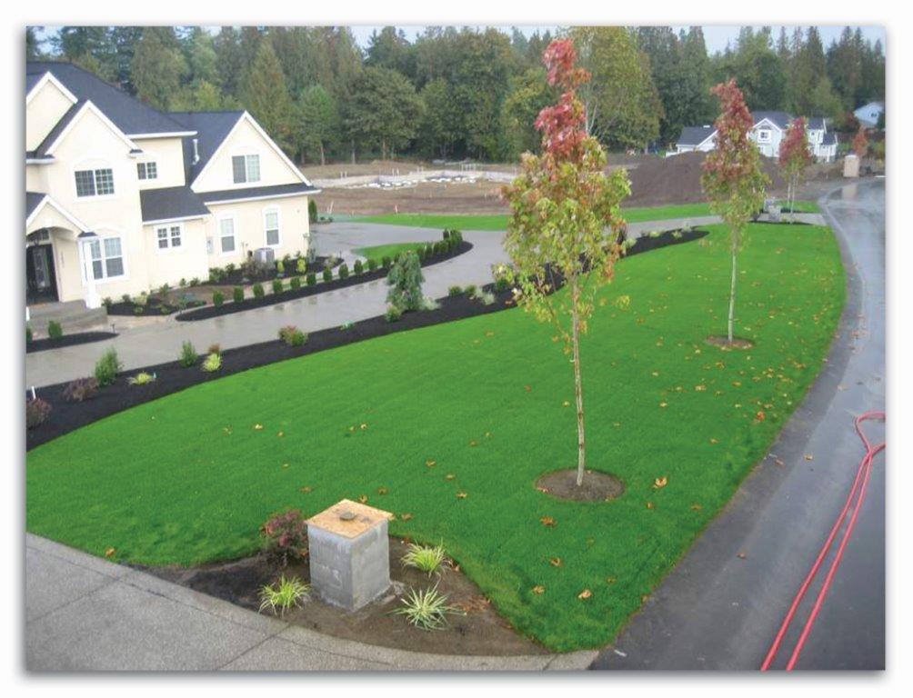 Rapid Gro Hydro Seeding Tacoma Seattle